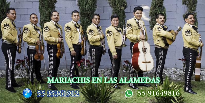 Mariachis en Las Alamedas