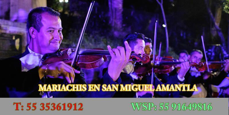 Mariachis en San Miguel Amantla