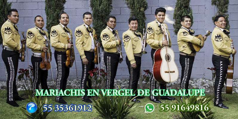 Mariachis en Vergel del Guadalupe